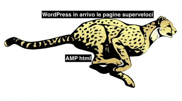 WordPress in arrivo il nuovo formato AMP, Accelerated Mobile Pages.