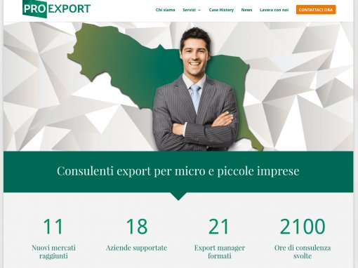 Pro Export – sito internet